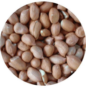 peanut-circle